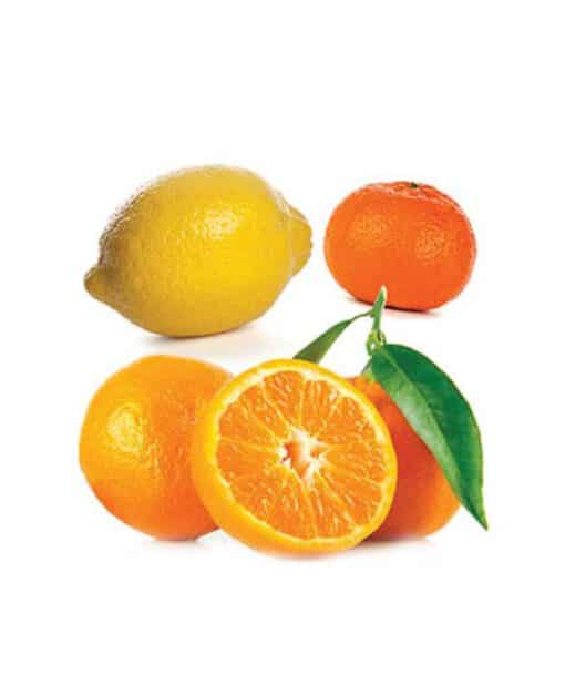 citrus bliss - שמן הדרים